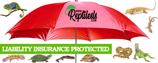 reptilesls liability insurance main flyer